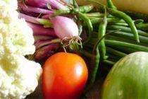 Cómo Conservar correctamente las Verduras