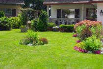 Cómo Diseñar un Jardín