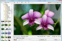 Como editar una imagen online