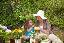 Como mejorar de manera práctica nuestro jardín