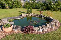 Cómo construir un estanque para peces