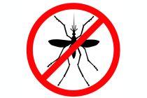 Cómo hacer un Repelente casero para Mosquitos