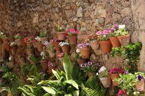 Qué son los jardines verticales y cómo construir uno. Procedimiento para hacer un jardín vertical. Jardines hidropónico y verticales