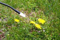 Precauciones al aplicara un herbicida total