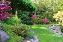 Especies de plantas para jardines muy húmedos. Como elegir las plantas para un jardín de zonas muy húmedas. Plantas para un jardín con mucha humedad