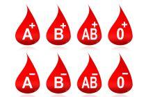 Cómo balancear la dieta según el grupo sanguíneo