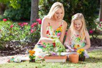 Cómo cuidar al medio ambiente desde nuestro jardín