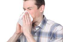 Remedios naturales para combatir la alergia