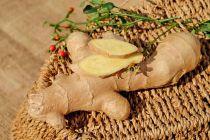 Pasos para cultivar jengibre. Cómo plantar jengibre en casa. Guía para sembrar una raíz de jengibre. Cómo cultivar jengibre desde raíz