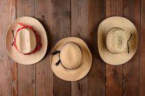 Cómo Decorar una Pared con Sombreros