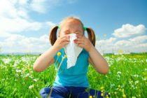 Cómo Funcionan las Alergias