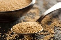 Beneficios y propiedades de las semillas de amaranto. Cómo consumir semillas de amaranto. Propiedades del amaranto