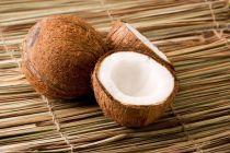 Los Distintos Productos de Coco