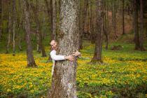 Beneficios de abrazar un árbol. Ventajas de abrazar árboles. Recibe los beneficios de abrazar árboles