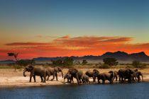 Cómo Recorrer África en un Año