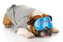 Beneficios de Dormir Más