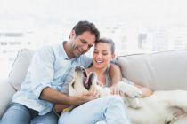 Consejos para Adoptar una Mascota en Pareja
