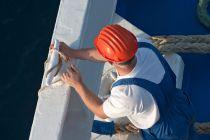Tips para Trabajar en un Crucero