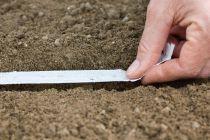 Cómo hacer una Cinta de Siembra