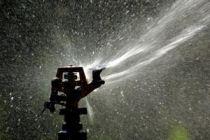 Cómo regar para prevenir un gasto excesivo de agua