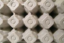 Ideas para reciclar envases de huevos